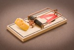 Regular mousetrap